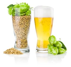 surprising alkalizing effects of draft beer