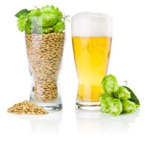 surprising alkalizing effects of draft beer