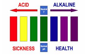 10 acidic foods to avoid weight gain